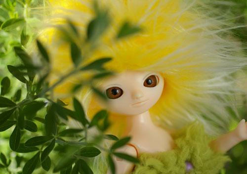 080216レモン2