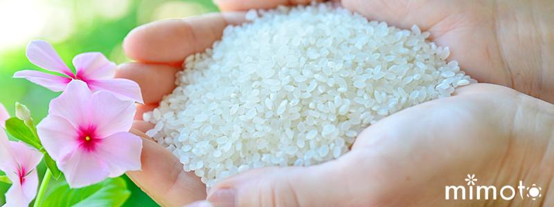 花屋のお米 園芸店のお米 美味しいお米 見元のお米 高知県産 仁淀川 仁淀ブルー