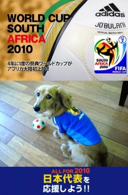 2010ワールドカップポスター風