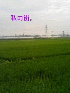20060714_58918.JPG