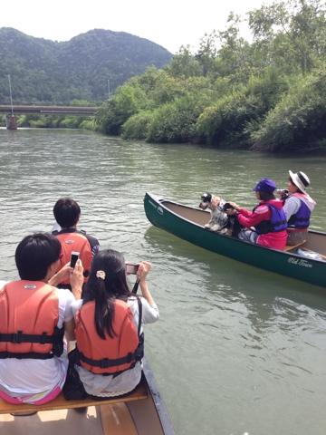富良野でワンコと川下り