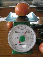 トマトの体重