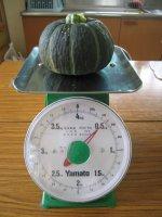 かぼちゃの体重