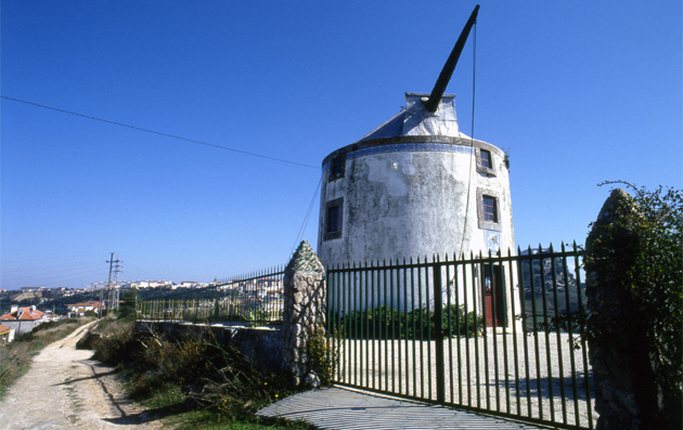 Windmill 風車