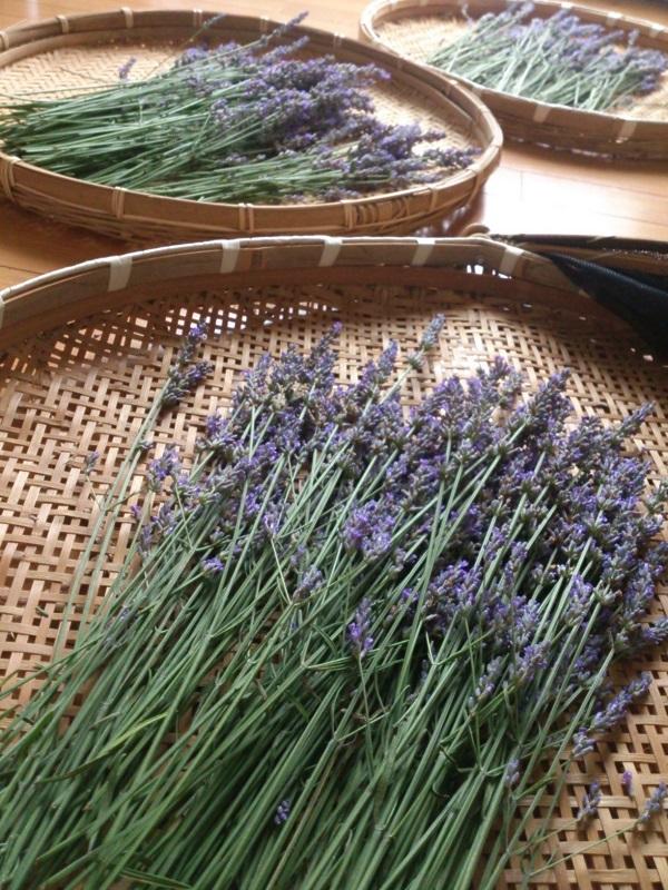 Lavender2014