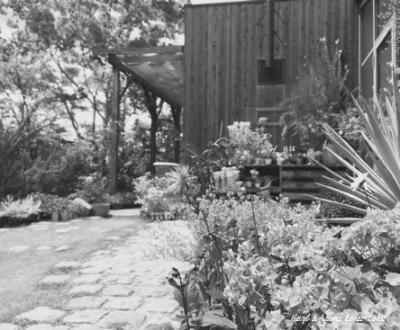 Im garden