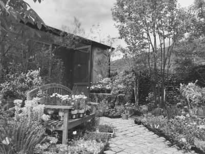 Im garden2