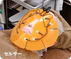 高周波セルサーマスク【フジムラ薬局】