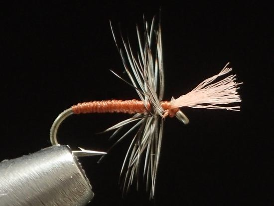 管釣り/エリアフィッシング 冬
