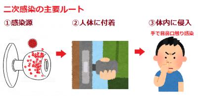 二次感染の主要ルート