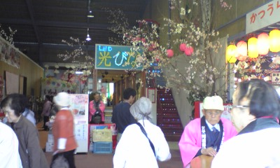 上勝町のビックひな祭り2010