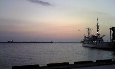 白んで来た小松島港