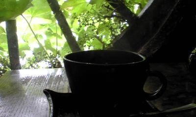 大菩薩峠のコーヒー