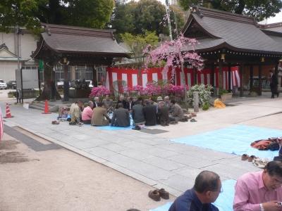 櫛田神社のお花見