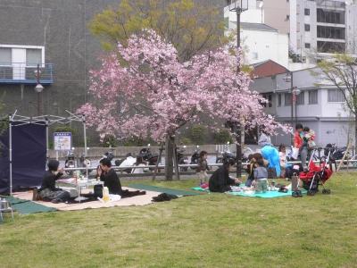 冷泉公園のお花見