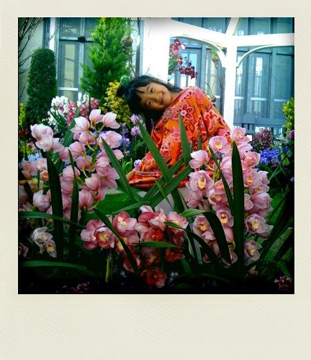 @奇跡の星の植物館