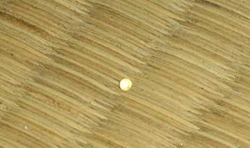 畳の上の、球体