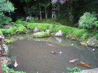 寂光院四方正面の池