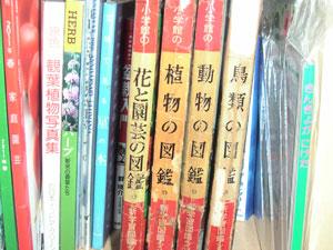 小学館の学習図鑑