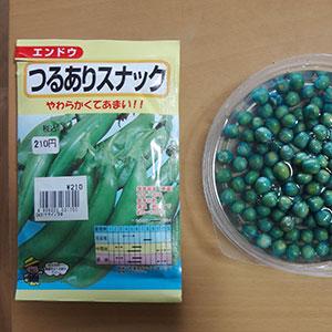 スナックエンドウの種子