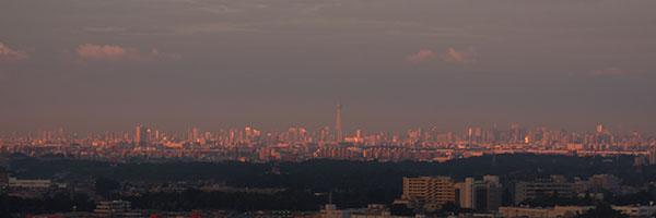 朝陽に照らされる都市