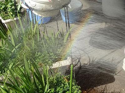 シャワーの虹