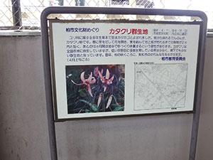 逆井駅の案内看板