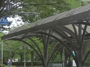 バス停の屋根の上の植物