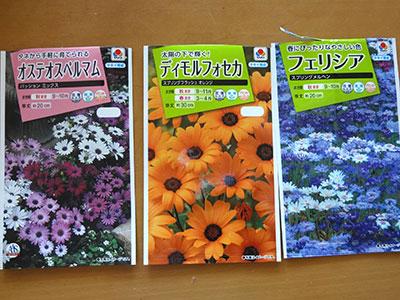 フェリシア、ディモルフォセカ、オステオスペルマムの種子