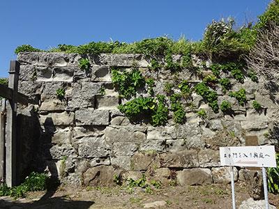 仁右衛門島の石垣