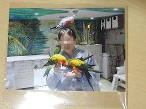 鳥のいるカフェ 浅草店にて オオハナインコの女のコ