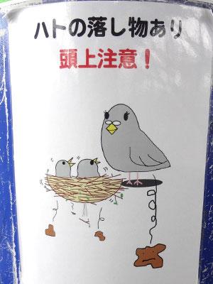 「ハトの落し物にご注意ください」流山おおたかの森駅