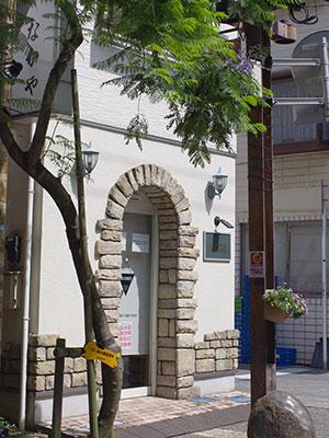 谷津遊路商店街のジャカランダ