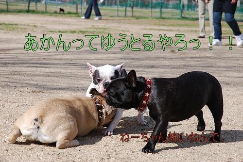 おーちゃん&moko&roko