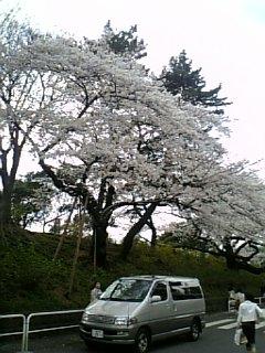 20070402_273016.jpg