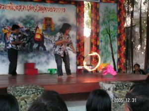 猿の火の輪くぐり