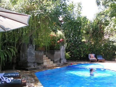 サヌール スリファラリゾートのプール