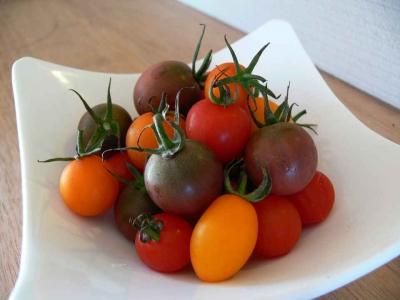 トマトがいっぱい♪