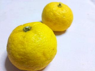 柚。.jpg