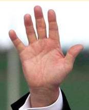 トランプ大統領の手相