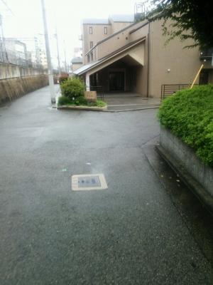 DSC_0130.JPG