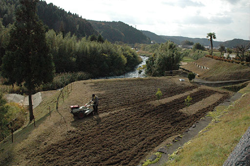 農業法人明るい農村