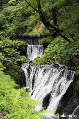 白糸の滝道中