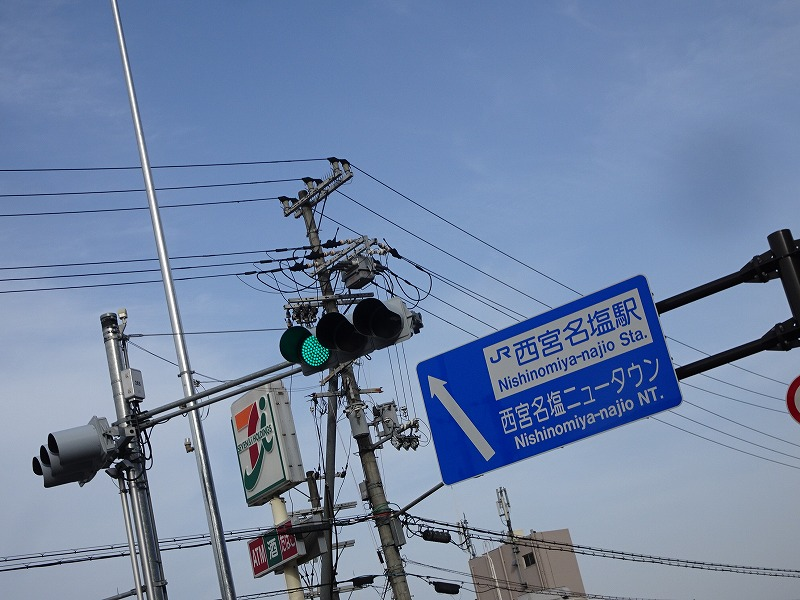DSC08210.jpg