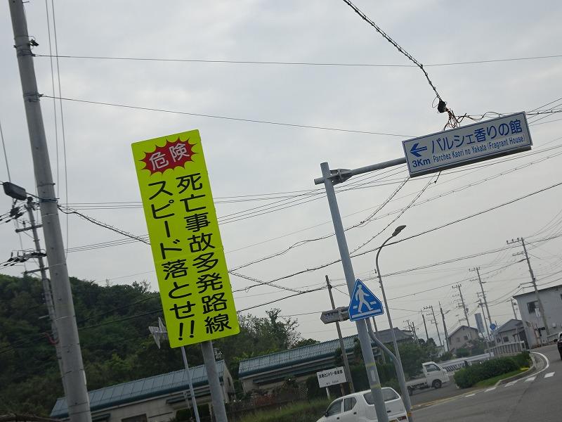 DSC04567.jpg