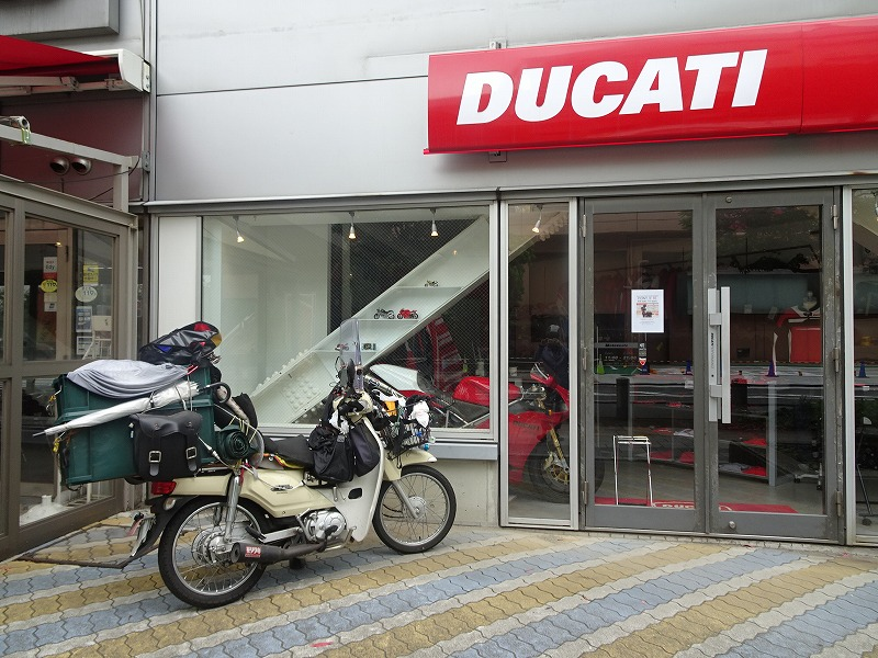 DSC03552.jpg