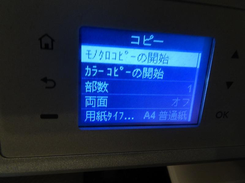 DSC06848.jpg