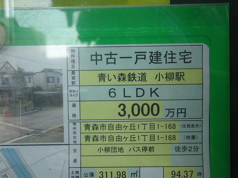 DSC08094.jpg