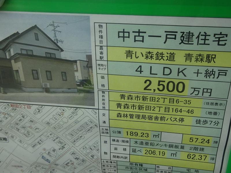 DSC08095.jpg