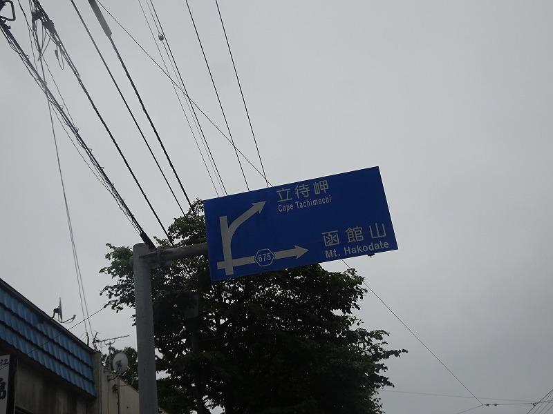 DSC08553.jpg